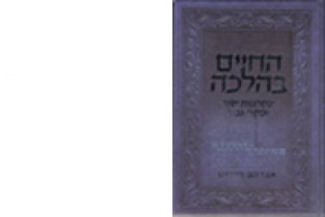 The Value of Life in Jewish Law